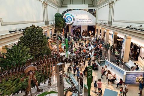 image of the Smithsonian
